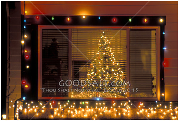 christmas tree through a window with christmas lights