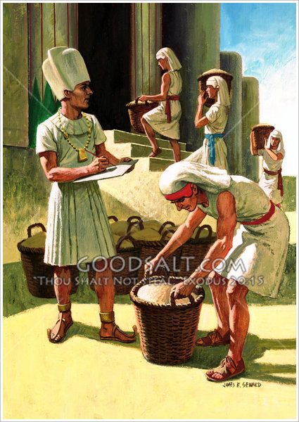 Joseph Collects Grain